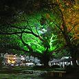 Puistoa iltavalaistuksessa Melaka
