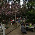 Temppelin puistossa, Kunming