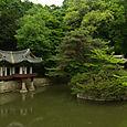 Garden, Changdeokgung Palace