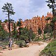 Canyonin pohjalla, Bryce