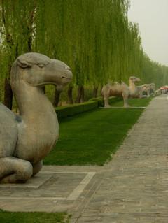 Ming_tombs_tekstin_kuva