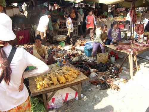 Toritunnelmaa Phnom Penh