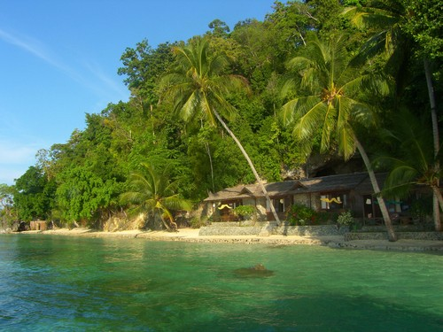 Black marlin dive resort Kadidiri