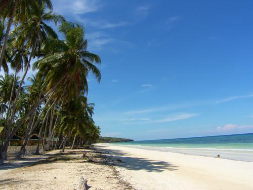Pantai Timur Sulawesi