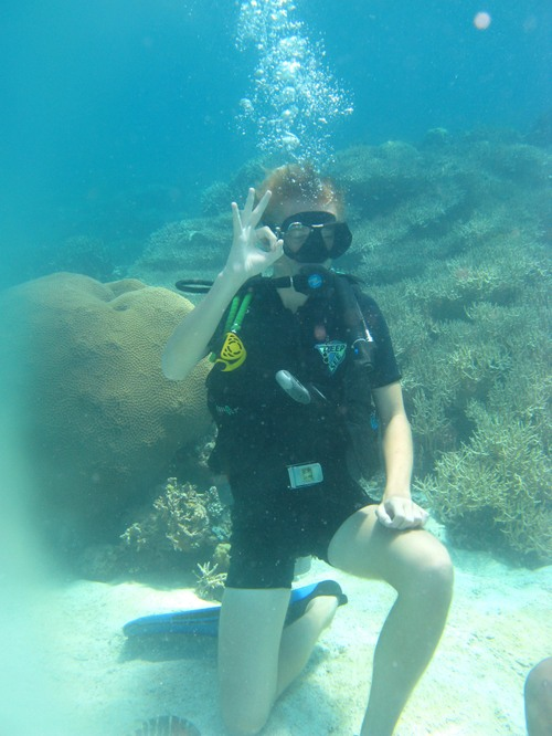 Sasa diving