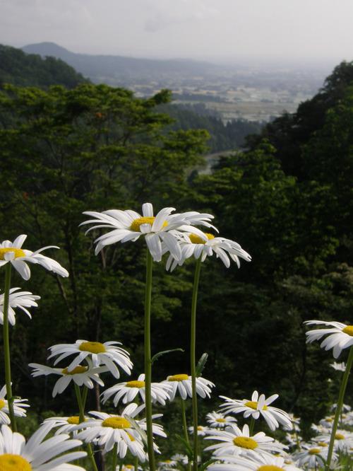 Vuoristonäkymää