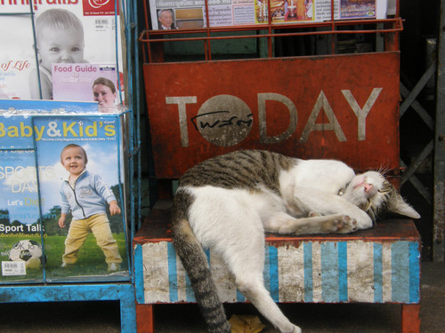 Today Bangkok
