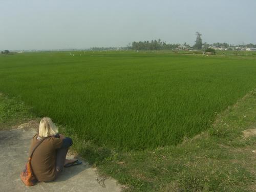 Riisipeltoa, Hoi An