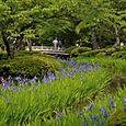 Kenrokuten Garden, Kanazawa