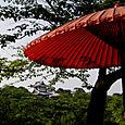 Japanilaista tunnelmaa