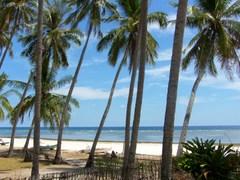 Pantai_timur_sulawesi