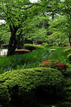 Kenrokuen_garden_lopputekstin_kuv_k