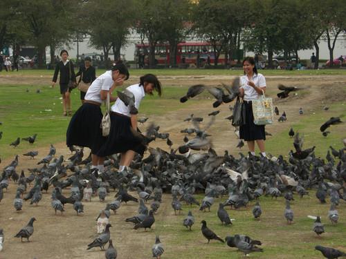 Puistossa Bangkok